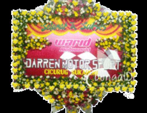 Bunga papan  Cilacap Purwokerto Banjarnegara Gombong Wonosobo